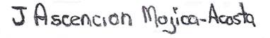 Ascencion Signature